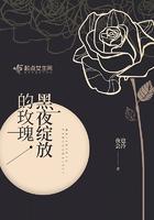 黑夜綻放的玫瑰